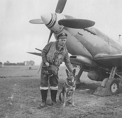 Dogger, Ragnar of 331 SQN